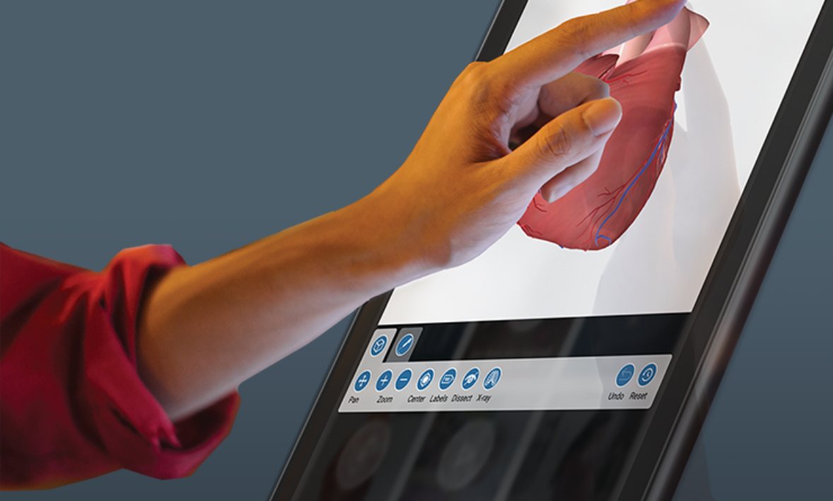 Hand touching a PatientPoint interactive touchscreen displaying a three-dimensional heart anatomical.
